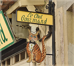 """Le chat gourmand"""