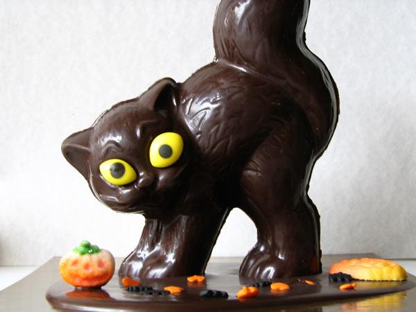 Chocolat-chat!!!