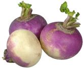 Recette du Mesnil-Marie : une quiche aux navets et aux champignons. dans Chronique de Lully navets