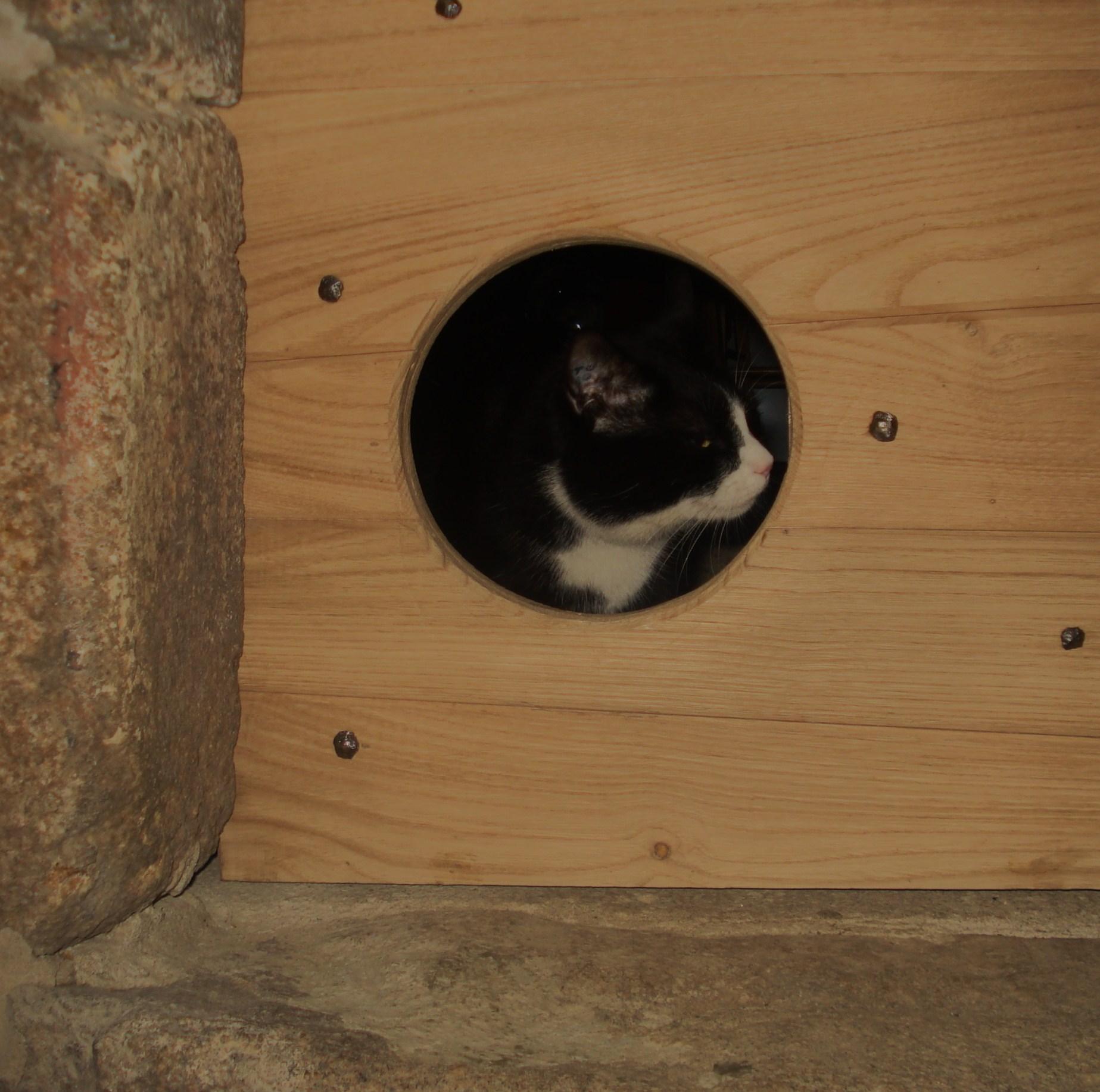 2010 12 des travaux d hiver au mesnil marie d une chati re et de la mani re dont on. Black Bedroom Furniture Sets. Home Design Ideas
