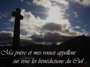 2012-1. Voeux pour l'an de grâce 2012. dans Annonces & Nouvelles DSC09551-Copie-300x225