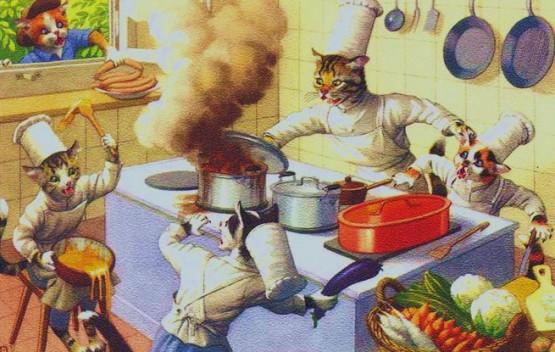Chats en cuisine