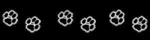 2012-65. Réflexions et citations sans ordre autour d'un anniversaire : dans Commentaires d'actualité & humeurs pattes-de-chat-frise-300x81
