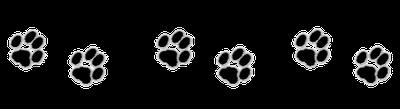 pattes de chat - frise