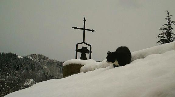 lully-sur-le-toit-23-janvier carême dans Chronique de Lully