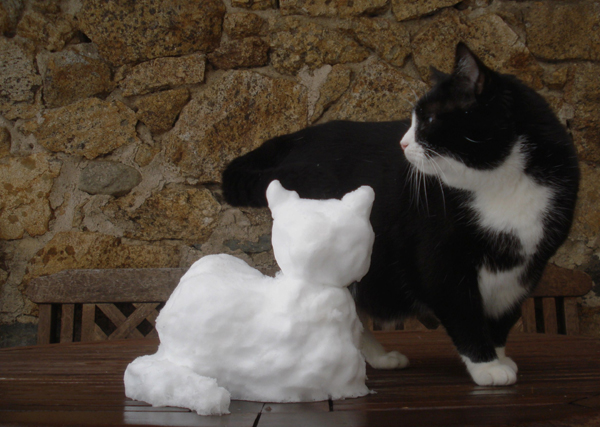 Lully et son chat de neige