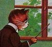 chat professeur