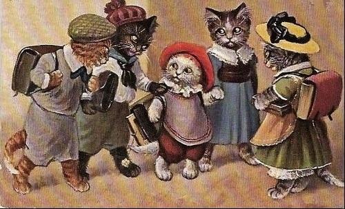 A l'école des chats 1