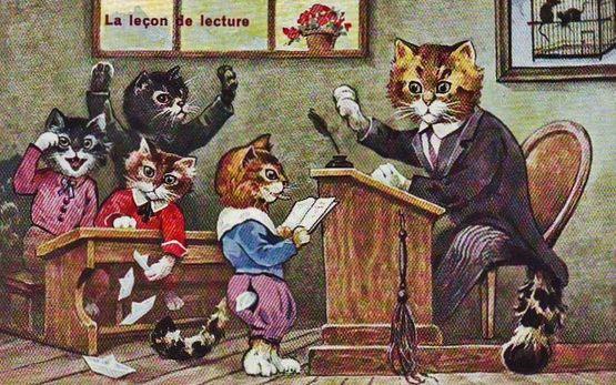 A l'école des chats 3