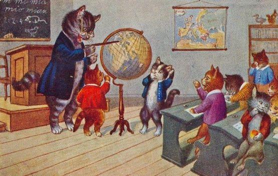 A l'école des chats 5