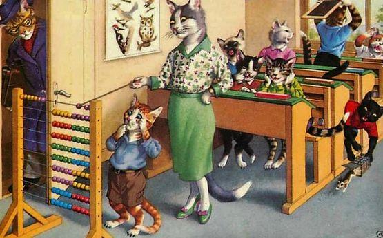 A l'école des chats 6