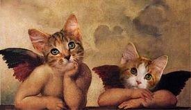 anges chats d'après Raphaël