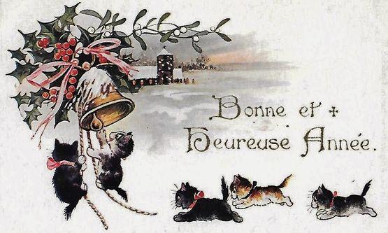 Chats Bonne Année 1