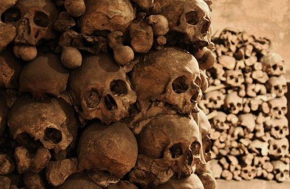 Ossuaire de la crypte de la chapelle expiatoire des Brotteaux - détail