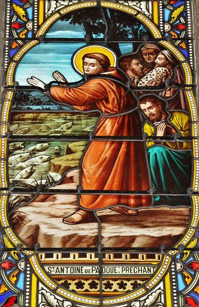 Saint Antoine de Padoue prêchant aux poissons - vitrail de l'église Saint-Ferdinant à Arcachon